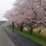 川崎グランド(南船木)