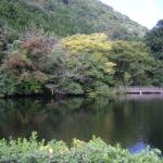 今津 紅葉池